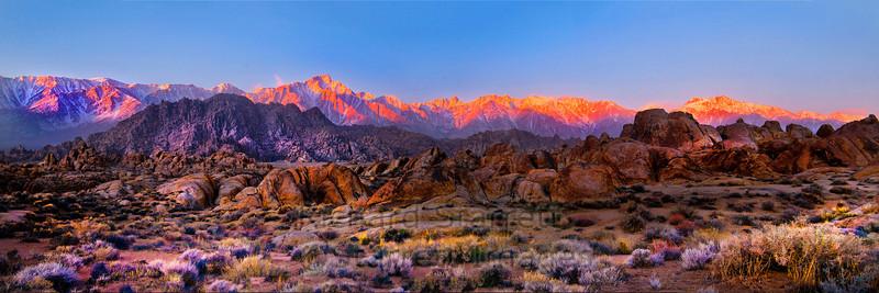 Panorama , Sierra at dawn
