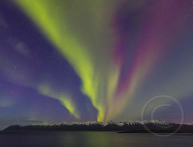 Aurora Geyser