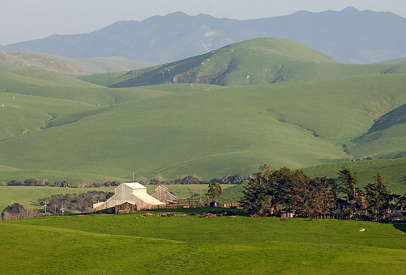 Green Hills and Barns
