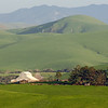 Green Hills and Barns