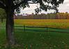 Wind Gap, PA - 2013