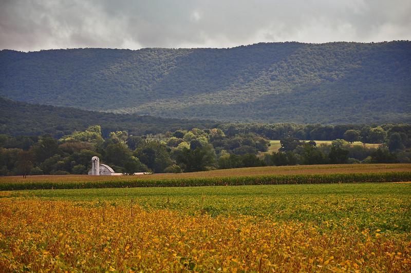 Shenandoah County, VA - 2011