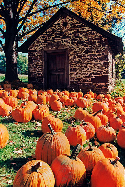 Trauger's Farm - Kintnersville, PA - 2000