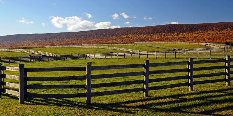 Berks County, PA - 2013
