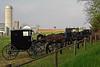 Mennoite Auction - Kutztown, PA - 2012