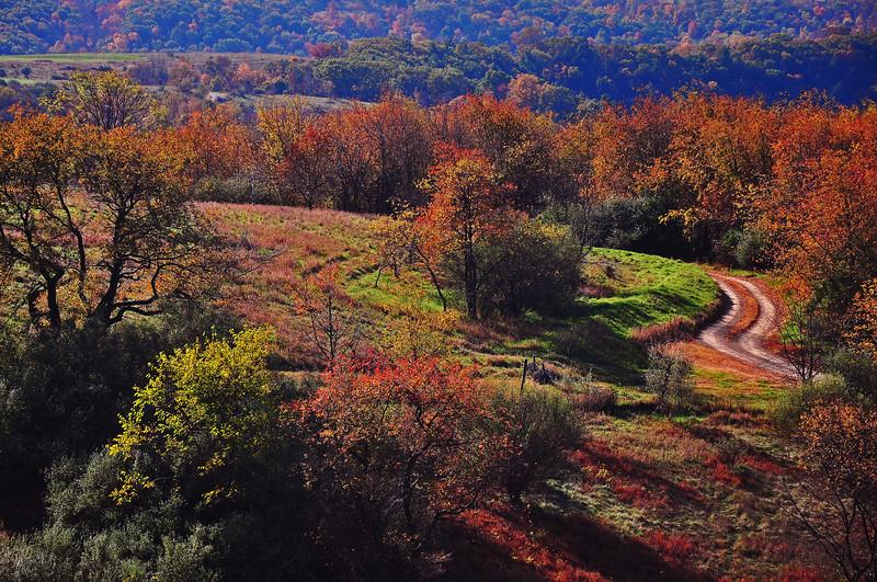 Lehigh County, PA - 2010