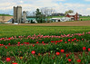 Berks County, PA - 2014