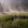 Marsh Lake, mist over the marsh