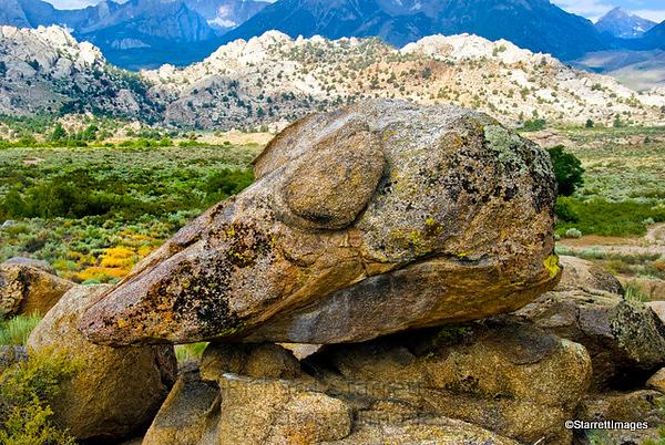 Dinosaur rock, Buttermilk Valley