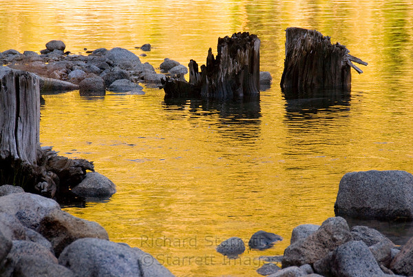Golden dawn reflections