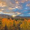 Silverthorne Foliage Sunrise
