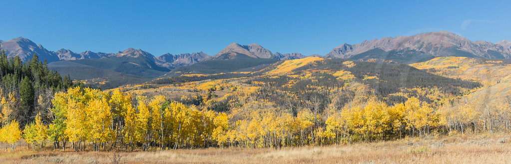 Fall Colors Summit County Colorado