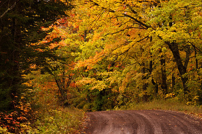 Fall Colors - Honeymoon Trail - Cook County, MN