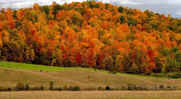 Upper New York State