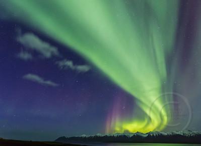 Aurora Alive