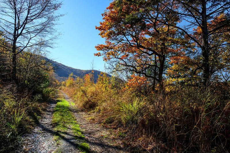 Lehigh Gap - Carbon County, PA - 2019