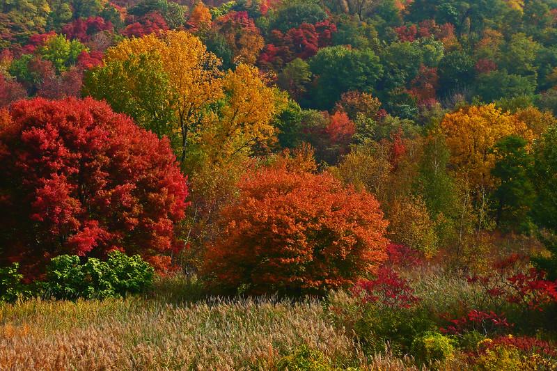 Lehigh Gap - Lehigh County, PA - 2008