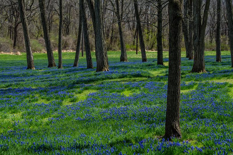 Lockridge Furnace Park - Alburtis, PA - 2015