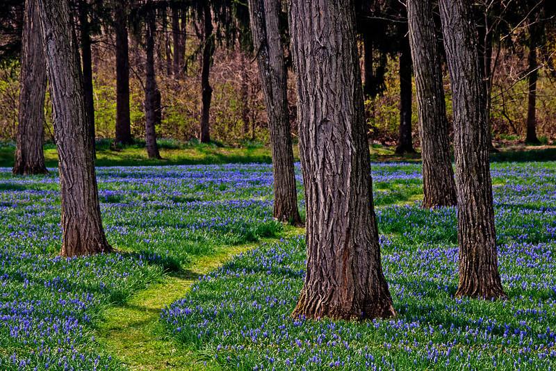 Lockridge Furnace Park - Alburtis, PA - 2012