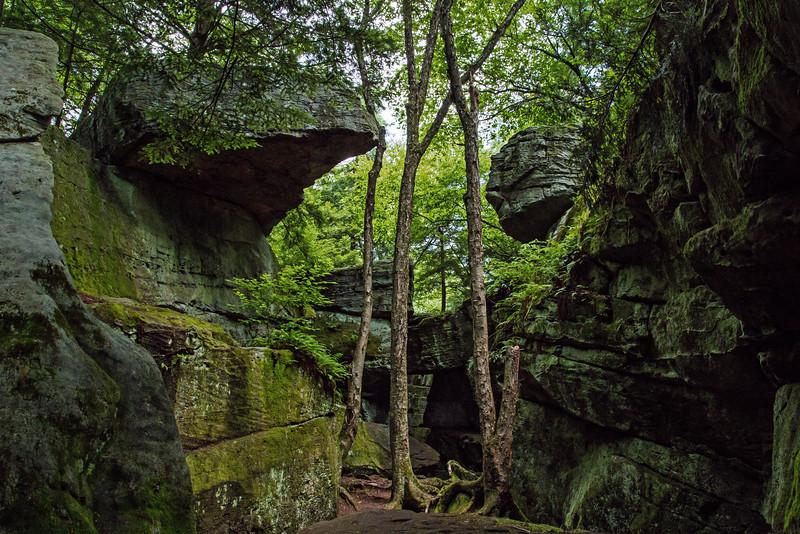 Bilger's Rocks - Clearfield County, PA - 2014