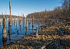 Merrill Creek Reservoir - Warren County, NJ - 2014