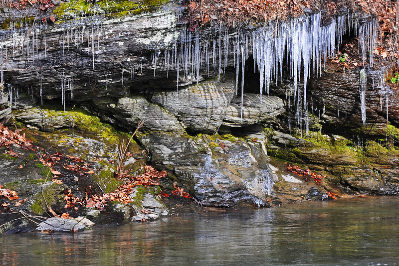 Along Jordan Creek - Lehigh County, PA - 2012