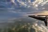 Salton reflections