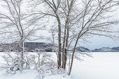 Acadia National Park, Maine, USA.  Scenic winter landscape of snow-covered trees, frozen lake covered in snow with snow-covered mountains in the bacground.