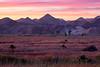 The Yuma foothills