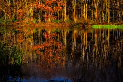 Hocking Hills State Park, Ohio, USA. Autumn reflections.