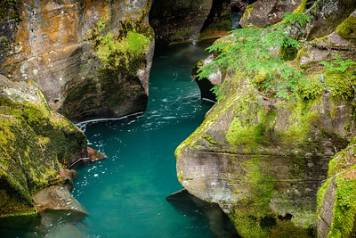 USA, Montana, Glacier National Park.  Avalanche Creek