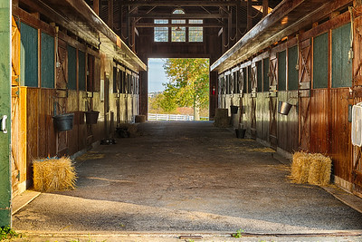 North America, Lexington, KY. Horse barn interior at Darby Dan Farm.