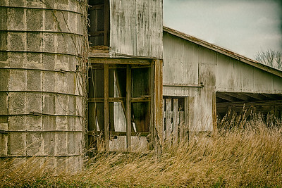 Abandoned farm buildings amid dried grasses.