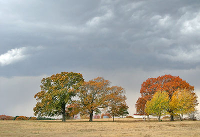 Taken with my Tamron 28-75 f/2.8 Lens. Stormy Day and Fall colors. 27 November, 2005.