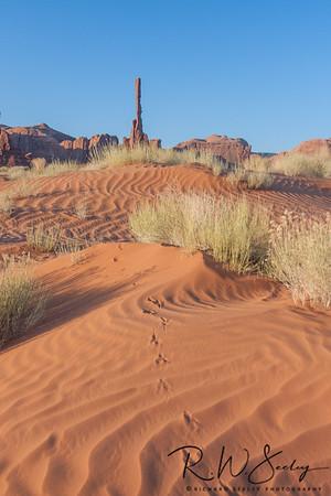 Totem Tracks