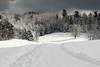 Snow scene-1000642