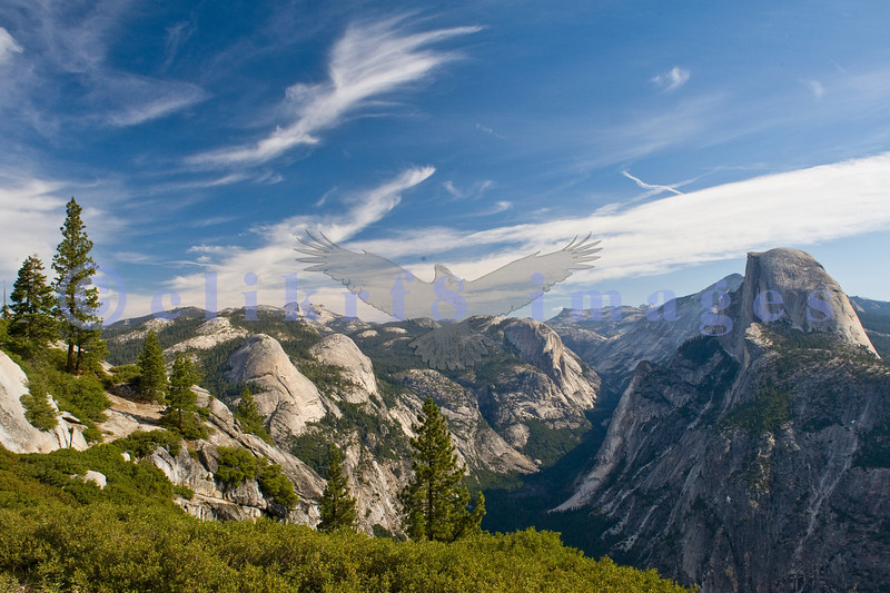 Ah, Yosemite. I am so glad that John Muir and others prevailed and made this area one of the nation's earliest national parks. The sad part is that it attracts people worldwide who love it to death. Half Dome rises on the right in this view from Glacier Point. in mid-morning.