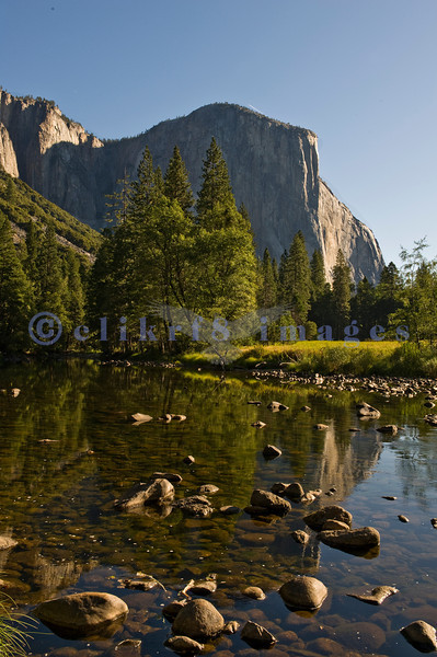 Ah, Yosemite. I am so glad that John Muir and others prevailed and made this area one of the nation's earliest national parks. The sad part is that it attracts people worldwide who love it to death. This is an early morning view of El Capitan reflected in the placid Merced River.