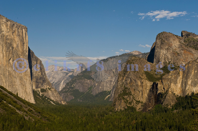 Ah, Yosemite. I am so glad that John Muir and others prevailed and made this area one of the nation's earliest national parks. The sad part is that it attracts people worldwide who love it to death. This is the famed Tunnel View that looks across Yosemite Valley to El Capitan on the left, Bridal Veil Falls in lower right quadrant and Half Dome in the far distance, left of center.