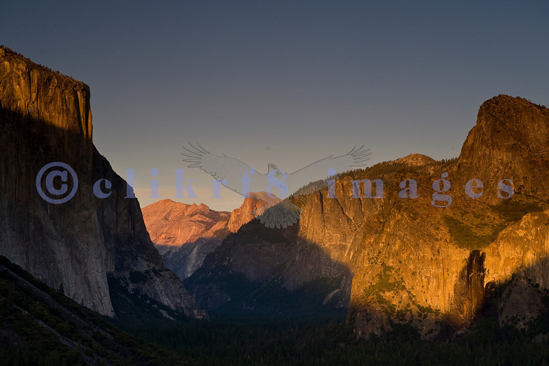 Ah, Yosemite. I am so glad that John Muir and others prevailed and made this area one of the nation's earliest national parks. The sad part is that it attracts people worldwide who love it to death. This is the famed Tunnel View that looks across Yosemite Valley to El Capitan on the left, Bridal Veil Falls in lower right quadrant and Half Dome in the far distance, left of center. I was there along with  about 20 other photographers with tripods and high end cameras were there to catch the last light after the rush of tour buses had left.