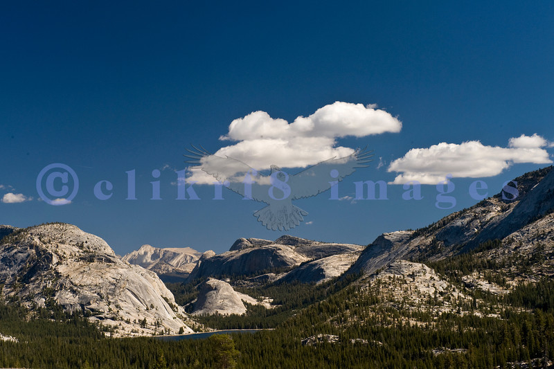 Ah, Yosemite. I am so glad that John Muir and others prevailed and made this area one of the nation's earliest national parks. The sad part is that it attracts people worldwide who love it to death. Tenaya Lake viewed from Olmsted Overlook on the Tioga Highway (120) coming west from Lee Vining.
