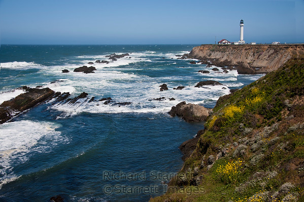 Point Arena Light,  Mendocino Coast
