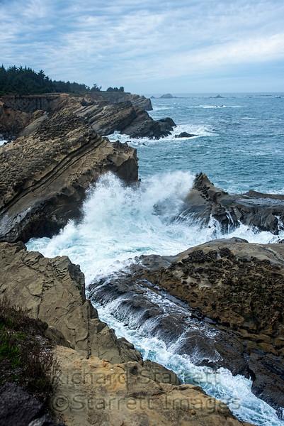 Cape Arago, OR