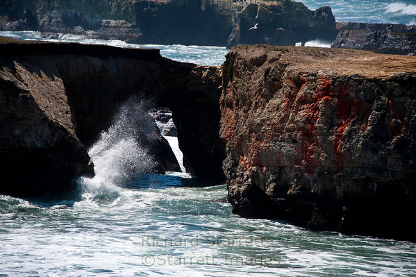 Mendocino Headlands