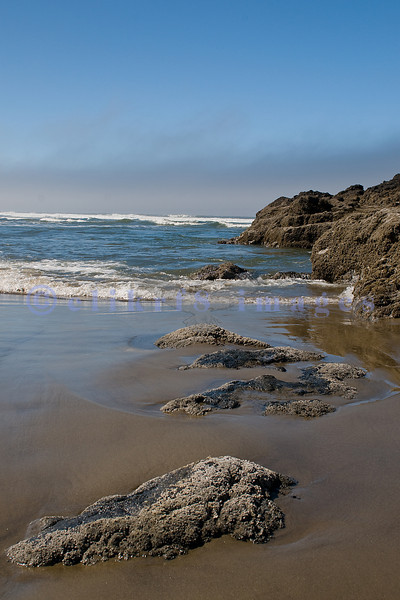 Cummins Creek State Park was our first stop on our second day on Oregon's Central Coast. A long sandy beach stretched until Bob Creek. Between the shore and bluffs were rocky outcrops and partly submerged boulders.