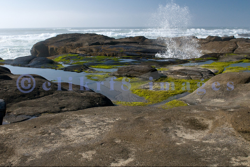 Along the 804 Trail on Oregon's Central Coast near Yachats, is a rocky shoreline worn smooth by the relentless pounding Pacific Ocean.