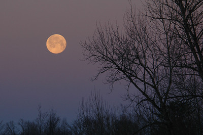 Full Moon - Itasca County, MN