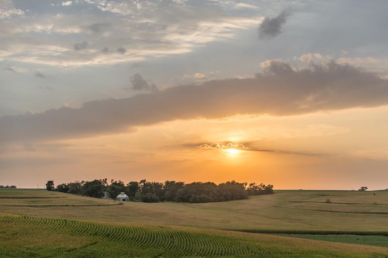 Near Harvest Sun