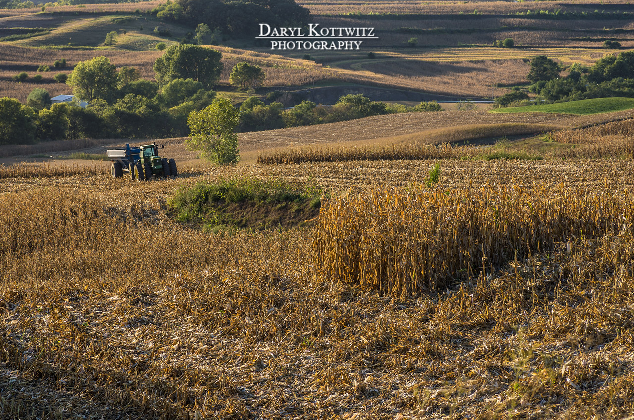 Corn harvest time in the Loess Hills of western Iowa.  Beautiful hills during the most beautiful time of the year.