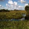 Marsh Bend